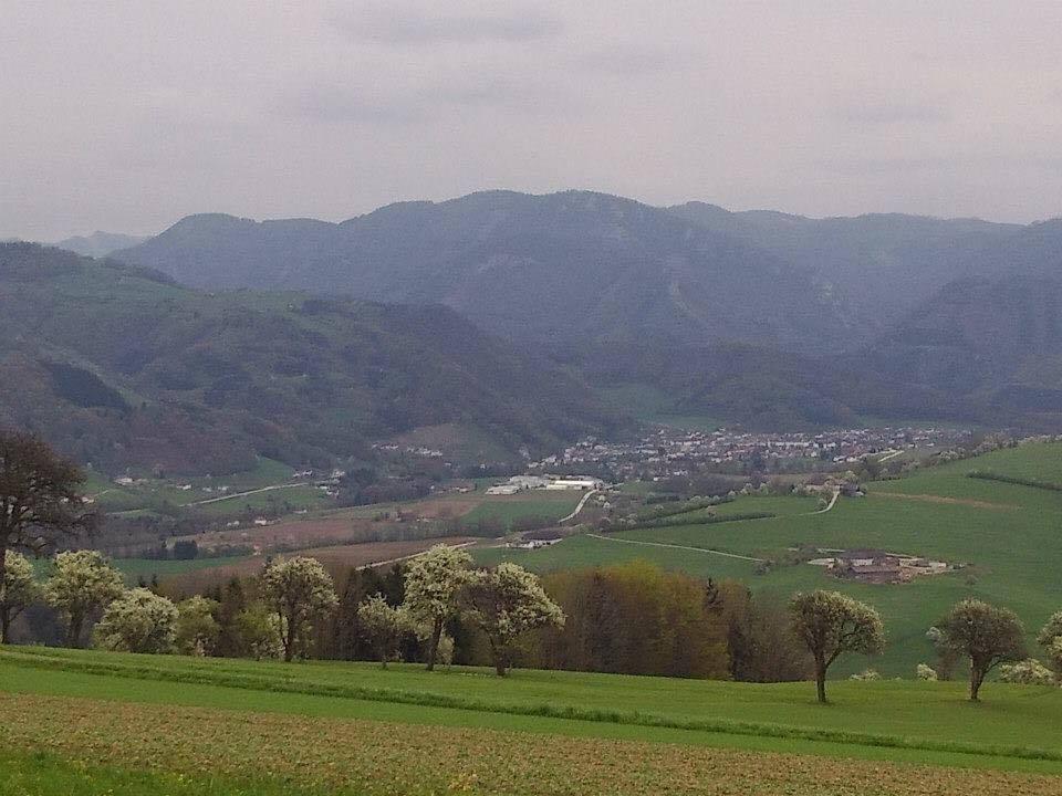 Ausztria, sikeres üzletasszony
